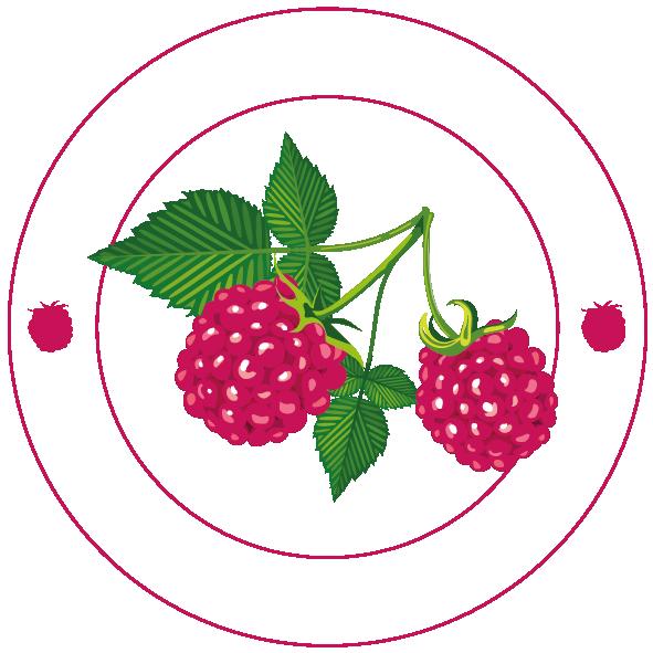 LogoLEscaleSansFond